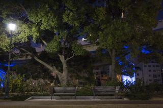 benches at night