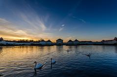 Sunset at Nymphenburg Palace (hjuengst) Tags: sunset sun lake reflection castle water night clouds munich münchen see wasser sonnenuntergang cloudy blau schloss nymphenburgpalace reflektionen blauestunde nymphenburgerschloss nikond7000