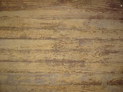Worn Hardwood Floor (smenjas) Tags: texture country dilapidation