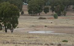 Lot 242, 242 Cookahills Road, Cookamidgera NSW