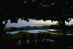 (Denise P.S.) Tags: trees summer silhouette yard photography view swimmingpool denise overlooking theniseps