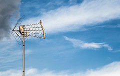 Excellent Reception (gmint7) Tags: sky bird tv antenna mockingjay