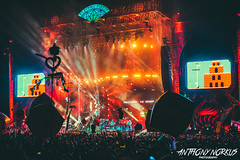 The String Cheese Incident @ Electric Forest Festival 2014 (Anthony Norkus Photography) Tags: electric michael bill brothers bass guitar nintendo keith super mario fender question acoustic block bros moseley telecaster michaelkang billnershi nershi keithmoseley