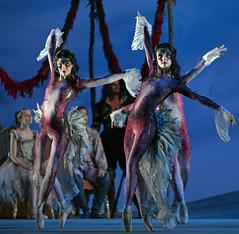artists of the company (DanceTabs) Tags: dance ballet brb birminghamroyalballet dancers classocalballet shakespeare