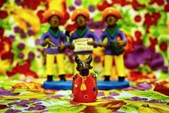 Boi-Bumb (AdrianoSetimo) Tags: boibumb bumbameuboi folclore folklore tradio tradition boi musica music cores colors color cor olympusem10 olympusomdem10 olympusmzuikodigitaled1240mmf28pro olympus1240mm olympus brasil brazil maranho red vermelho dof
