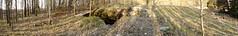 DSC02585 (PorkkalanParenteesi/YouTube) Tags: hylätty bunkkeri kirkkonummi soviet bunker porkkalanparenteesi zif25
