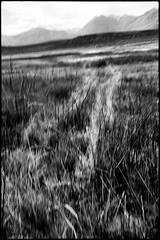 Eastern Sierras (icki) Tags: ca california easterncalifornia september2016 sierras hotspring saltflat