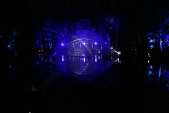 2016 - 14.10.16 Enchanted Forest - Pitlochry (223) (marie137) Tags: enchanted forest pitlochry mobrie137 scotland lights music people water reflection trees shows food fire drink pit patter shapes art abstract night sky tour family walk path bells smoke disco balls unusual whisperer bridge wood colour fun sculpture day amazing spectacular must see landscape faskally shimmer town