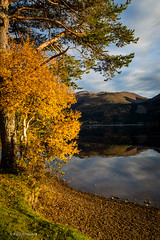Fall (Askjell's Photo) Tags: aareneset lake mreogromsdal norway reflection rotevatnet scenery sunnmre volda autum fall landscape