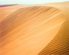 Near And Far Golden Dune Top (Doha Sam) Tags: 160 4x5 analogue c41 chrome colorneg colorperfect crowngraphic desert dunes epsonv700 film fuji largeformat linearscan manualfocus negative pn160ns pacemakercrowngraphic piccure pro160ns qatar rawtherapee samagnew sand scan southerndesert summer wilderness iso160 smashandgrabphotocom wwwsamagnewcom