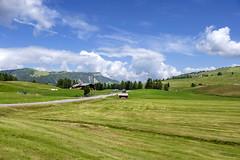 Alto Adige (Italy) - Alpe di Siusi (Massimo Battesini) Tags: nationalgeographic worldtrekker landscape fujifilmxt1 fuji xt1 fujixt1 fujifilm finepix fujinon fujinonxf18135 fuji18135 fujifilmfujinonxf18135mmf3556rlmoiswr montagna montagne dolomiti mountains montaas berg dolomite dolomitas dolomites alpi alpes alps alpen castelrotto trentinoaltoadige italia it italy italie italien europa europe siusi seiseralpe alpedisiusi seiseralm