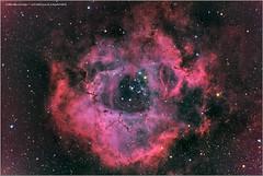 NGC2237_La-Rosette (charlaubert) Tags: ngc2237 ngc2238 ngc2239 ngc2236 rosette lycorne