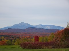 Katahdin View-Autumn foliage (thepiper351) Tags: national park forest woods timberland mountains leaf leaves