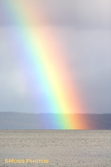 Rainbow on Gander Lake (Sandra Y Moss) Tags: rainbow ganderlake gander lake colours colors bright rain shower prism