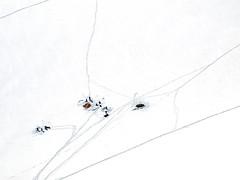 Mont Blanc (Leonardo oga) Tags: mont blanc snow vallee blanche aiguille leonardo oga climbers france