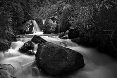 Falls in the wood (oquendog123) Tags: falls rocks water black white seda long exposure day trees
