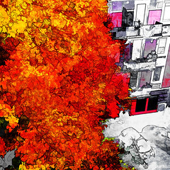 the autumn tree (j.p.yef) Tags: peterfey jpyef yef seasons autumn germany hamburg street houses tree leaves autumnleaves digitalart city stadt