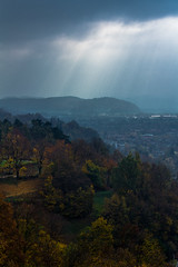 View from the Castle (CJPhotography UK) Tags: nature natur natural landscape city cityscape forest wood view viewpoint scenery scenic castle sky skyline light lighting sun sunlight shadow shade autumn outdoors beauty trees tree morning sunrise telefoto canon texture overcast cloud cloudy clouds