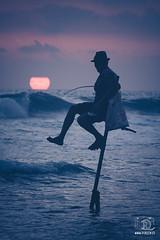 Sri Lanka (sicksadlittleworld) Tags: 2016 dalawella srilanka beautiful doreenreichmann journey landscape landschaft mar meer natur natura nature ocean paisaje reise sea sights travel trip fisherman fisher man hombre guy sunset sonnenuntergang ozean stelzenfischer stilt fishermen