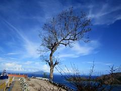 SUMMER (PINOY PHOTOGRAPHER) Tags: mati city solitariness davao oriental sur mindanao philippines asia world