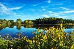 Celery Bog Day (Indiana Photographer) Tags: 2015 indiana landscape lafayette celerybog summer bluesky lake water trees wildflowers green blue