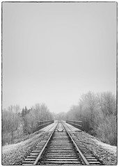 Foggy morning (Hiba Raza) Tags: fog bridge trees railroad lightroom sony blackandwhite