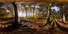 360 degree image - Autumn in Larvik (B.AA.S.) Tags: equirectangular nature norway norge natur bench benk skog scene scenics autumn tree trees trær tre larvik bøkeskogen shadow fall høst october sunlight 360degree 360 panorama