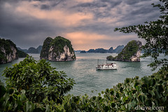 Cruising in Bay Tulong, Vietnam (dleiva) Tags: landscape sunset cruiser dleiva domingo leiva nature photography tree halong bay boat horizontal sunny day outdoors transportation color image idyllic incidental people scenics beauty in nonurban scene clear sky high angle view rock formation nautical vessel mode transport object tu long