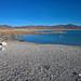 Crystal Reservoir - Ash Meadows Wildlife Refuge