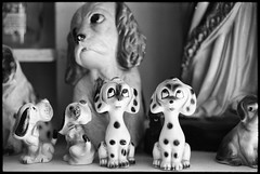Dogs (saampler) Tags: leicam4 dual range summicron 50mm aberfoyle antique market ontario ilford delta 100 blackandwhite 35mm film bw close up rangefinder