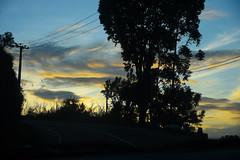 DSC_3217 (UdeshiG) Tags: mountain hike hillcountry teaestate mist sambar eagle hortonplains ohiya sunrise sky haputale nikon trek adisham