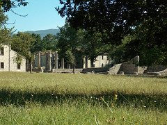 Decumanus maximus (Antonio De Capua) Tags: archaeology ancientrome molise sannio sepino anticaroma archeologia