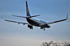 "EI-EKD Boeing 737-8AS Ryanair NCL 03-11-16 (PlanecrazyUK) Tags: eiekd boeing7378as ryanair ncl 031116 egnt newcastle ""newcastle airport"""