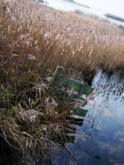 Leinwijk (Michiel Thomas) Tags: leinwijk kropswolde groningen zuidlaardermeer wetland
