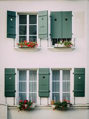 Three Quarters (freyavev) Tags: window windows green white house bern berne switzerland urbandetails suisse schweiz oldtown altstadt vsco niftyfifty mikasniftyfifty urban facade