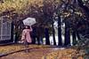 SDF_5697 (SendoFu) Tags: bonnet ボンネット エプロン風スカート blouse bl ブラウス headbow kc カチューシャ bnt 蕾絲 維多利亞 jsk op onepiecedress ワンピース jumperskirt ジャンパースカート nop lolita lolitafashion 蘿莉塔 蘿莉塔時裝 ロリータ・ファッション sweetlolita classicallolita