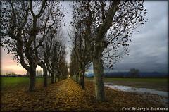 Una schiarita (celestino2011) Tags: viale acqua nuvole luce temporale