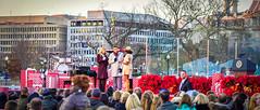 2016.12.01 Christmas Tree Lighting Ceremony, White House, Washington, DC USA 09279