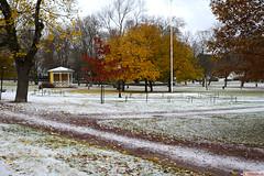 vintola photography (vintola) Tags: kirkkokirkkopuisto leicasl naantali syksy outdoor ndendal finland finnland autumn fall herbst hst snow sn schnee park tree baum trd