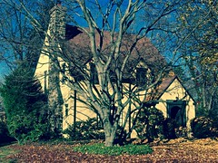 Home Is Where The Heart Is (Professor Bop) Tags: professorbop drjazz olympuse5 hamdenconnecticut home house tudor architecture fall autumn