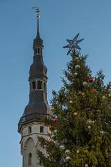Tallinn Town Hall Tower And Christmas Tree (AudioClassic) Tags: tallinntownhall tower christmastree christmas church estonia winter holydays skyline sprucetreebranch tree balticcountries architecture medieval buildingexterior