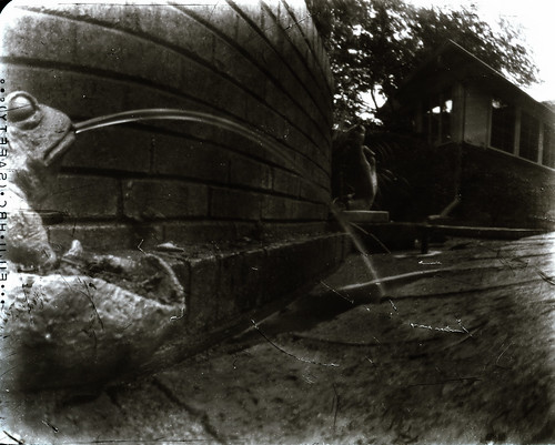 Mr. Squidhole Pinhole Camera on Xray Film