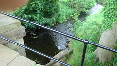 River Conder, Galgate (themaclad) Tags: june2012