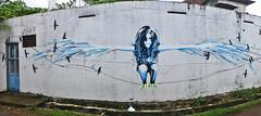 Kochi Street Art (jonhuskisson) Tags: asia india kerala kochi fortcochin streetart art graffiti travel panorama backpacking world culture wide