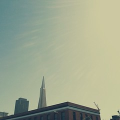 Transamerican Pyramid (Monica Galvan) Tags: sanfrancisco california city northerncalifornia buildings square financialdistrict squareformat transamericanpyramid iphoneography instagram instagramapp uploaded:by=instagram foursquare:venue=4ae4f7a3f964a520c49f21e3 vscocam