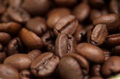 Coffee Beans (kakalot_at) Tags: food white macro coffee unitedstates maryland 2007 coffeebeans takenbyjeffkubina 200709 takingbyjeffkubina