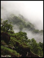 Shlolas and grassland, Charmadi ghat, Chikmagalur, India (Ananth V Rao) Tags: travel india mist nature rainforest karnataka westernghats charmadi chikmagalur sonyhx100v ananthvrao