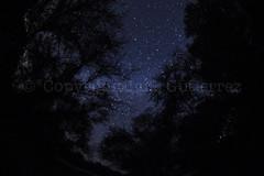 Estrellas (luis Gutierrez PUNKO) Tags: azul sonora night stars mexico star noche grande infinity space large galaxy cielo estrellas huge planets astros infinito estrella galaxia mex espacio planetas elgavilan inmenso viajealasestrellas bovedaceleste traveltothestars espaciocideral cideralspace sateliles skyblueskyvault