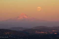 Once in a Blue Moon (Dimitri_Stucolov) Tags: sunset oregon portland rising northwest fullmoon mthood pacificnorthwest portlandor bluemoon rareevent sturgeonmoon grainmoon dimitristucolov dimitristucolovphotography