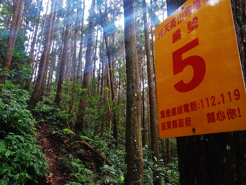 向天湖光天高山 (80).jpg